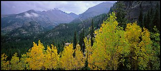 Autumn mountain landscape. Rocky Mountain National Park (Panoramic color)