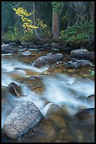 North St Vrain Creek in autumn. Rocky Mountain National Park ( color)