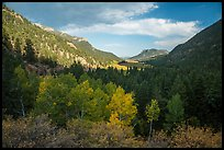Old Fall River valley in autumn. Rocky Mountain National Park ( color)