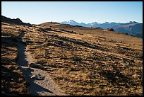 Ute Trail crossing alpine tundra. Rocky Mountain National Park ( color)