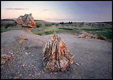 Pedestal petrified log and petrified stump sunset,. Theodore Roosevelt National Park, North Dakota, USA. (color)
