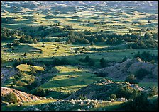 Prairie, trees, and badlands, Boicourt overlook, South Unit. Theodore Roosevelt National Park ( color)