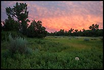Meadow and colorful sunset clouds, Elkhorn Ranch Unit. Theodore Roosevelt National Park ( color)