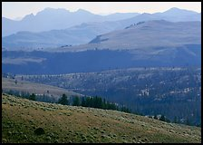 Absaroka Range from Dunraven Pass, early morning. Yellowstone National Park, Wyoming, USA.