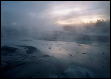 Steam in Norris Geyser Basin at dawn. Yellowstone National Park, Wyoming, USA. (color)