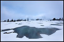 West Thumb Geyser Basin in winter. Yellowstone National Park ( color)