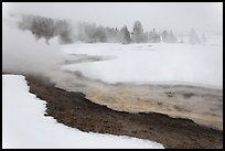 Upper Geyser Basin in winter. Yellowstone National Park, Wyoming, USA. (color)