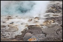 Hot springs detail. Yellowstone National Park, Wyoming, USA. (color)
