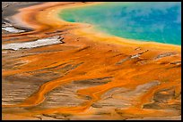 Grand Prismatic Spring detail from above. Yellowstone National Park ( color)