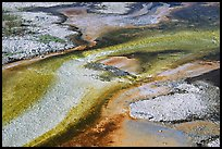 Colorful algaes patterns, Biscuit Basin. Yellowstone National Park, Wyoming, USA. (color)