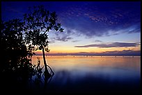 Sunset on Biscaye Bay from Elliott Key. Biscayne National Park, Florida, USA.