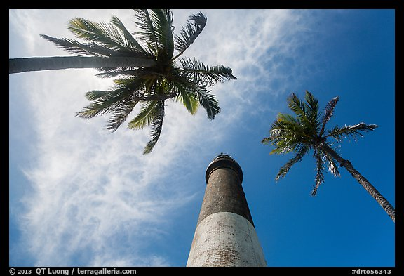 Looking up palm trees and Loggerhead Lighthouse. Dry Tortugas National Park, Florida, USA.