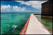 Snorkeling next to Fort Jefferson seawall. Dry Tortugas National Park, Florida, USA. (color)