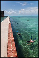 Snorkelers next to Fort Jefferson seawall. Dry Tortugas National Park, Florida, USA. (color)