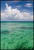 Reef and tropical clouds. Dry Tortugas National Park, Florida, USA. (color)
