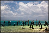 South coaling dock ruins and seabirds, Garden Key. Dry Tortugas National Park, Florida, USA. (color)