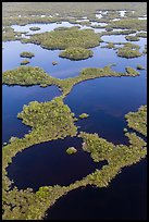 Aerial view of mosaic of lakes and and vegetation. Everglades National Park, Florida, USA. (color)