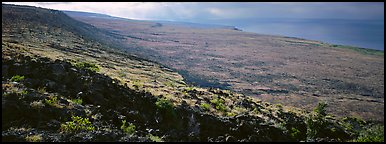 Volcanic landscape with lava rocks. Hawaii Volcanoes National Park (Panoramic color)