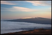 Snowy Mauna Loa above clouds at sunrise. Hawaii Volcanoes National Park, Hawaii, USA. (color)