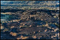 Petroglyphs created on the lava substrate. Hawaii Volcanoes National Park, Hawaii, USA. (color)