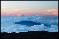 Puu Waawaa summit emerging from sea of clouds at sunset. Hawaii Volcanoes National Park, Hawaii, USA. (color)