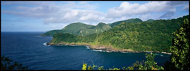 Verdant coasline with tropical vegetation, Tutuila Island. National Park of American Samoa (Panoramic color)