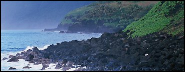 Coastline of Volcanic boulders, Tau Island. National Park of American Samoa (Panoramic color)
