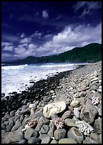 Coral heads on beach and dark hills, Tutuila Island. National Park of American Samoa
