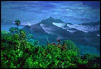 Tropical vegetation and turquoise waters in Vatia Bay, Tutuila Island. National Park of American Samoa