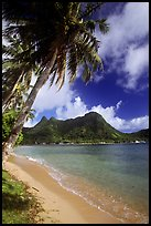 Palm-fringed beach in Vatia Bay, Tutuila Island. National Park of American Samoa (color)