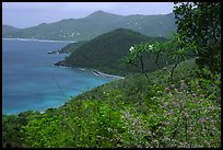 Hurricane Hole. Virgin Islands National Park, US Virgin Islands.