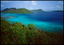 Tropical island environment with turquoise waters. Virgin Islands National Park, US Virgin Islands.