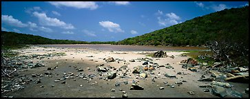 Pond with quicksand. Virgin Islands National Park (Panoramic color)
