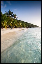Tropical beach in the evening, Salomon Bay. Virgin Islands National Park ( color)