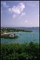 Cruz Bay harbor. Saint John, US Virgin Islands