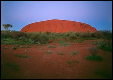 Ayers Rock at dawn. Uluru-Kata Tjuta National Park, Northern Territories, Australia ( color)