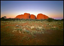 Olgas at sunset. Australia ( color)