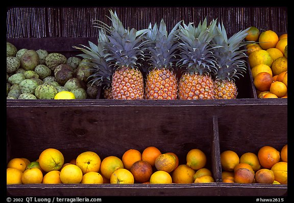 Tropical Fruits, roadside stand. Maui, Hawaii, USA (color)