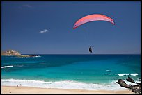 Paragliding above Makapuu Beach. Oahu island, Hawaii, USA