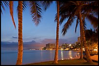 Palm trees and Waikiki beach at dusk. Waikiki, Honolulu, Oahu island, Hawaii, USA (color)
