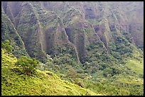 Flutted mountains near Pali highway,. Oahu island, Hawaii, USA ( color)