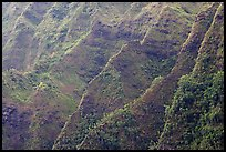Steep ridges covered with tropical vegetation, Koolau Mountains. Oahu island, Hawaii, USA ( color)