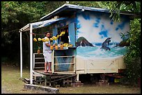 Man shopping at decorated fruit stand. Oahu island, Hawaii, USA ( color)