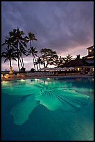 Swimming pool at sunset, Halekulani hotel. Waikiki, Honolulu, Oahu island, Hawaii, USA