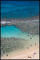Beach and reef, Hanauma Bay. Oahu island, Hawaii, USA