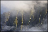 Fluted ridges seen through mist, Kalalau lookout, late afternoon. Kauai island, Hawaii, USA (color)