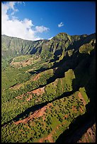 Aerial view of a valley, Na Pali Coast. Kauai island, Hawaii, USA ( color)