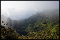 Kalalau Valley and mist, late afternoon. Kauai island, Hawaii, USA ( color)