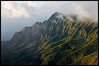 Lush Hills above Kalalau Valley, seen from the Pihea Trail, late afternoon. Kauai island, Hawaii, USA ( color)