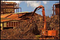 Sugar cane mill. Kauai island, Hawaii, USA (color)